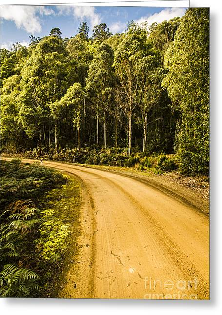 Dirt Roads And Rainforest Scenes Greeting Card