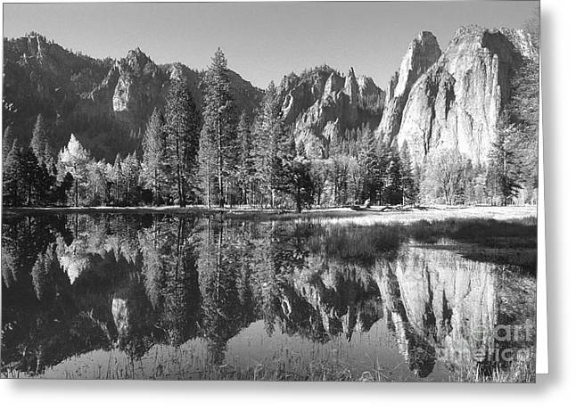Disappearing Reflections Greeting Card by Sandra Bronstein