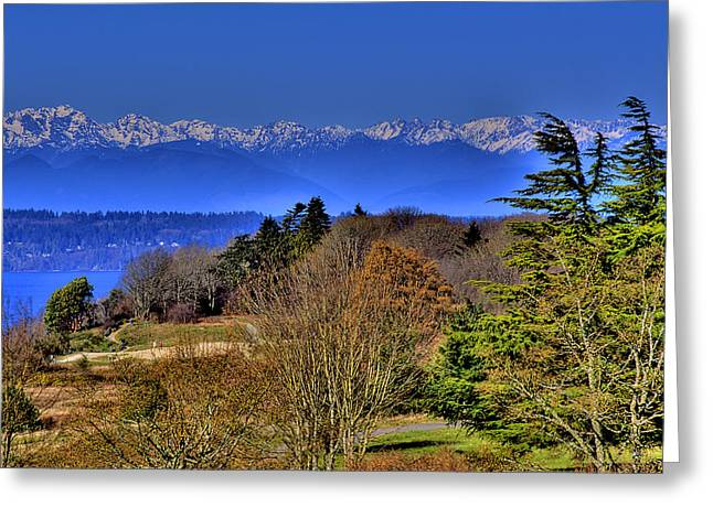 Discovery Park No.2 Greeting Card by David Patterson