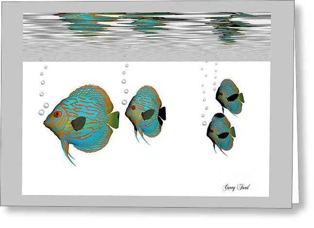 Discus Fish Greeting Card by Corey Ford