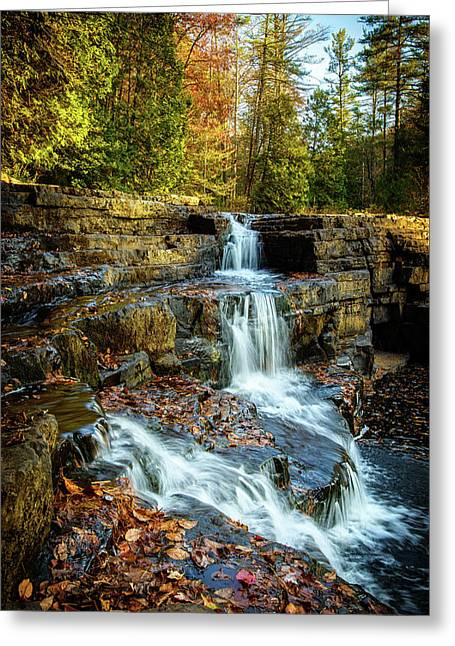 Dismal Falls #3 Greeting Card