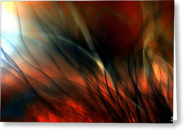 Distant Fire Greeting Card by JCYoung MacroXscape