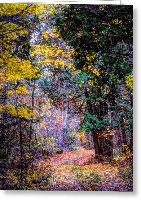 Distant Path Greeting Card