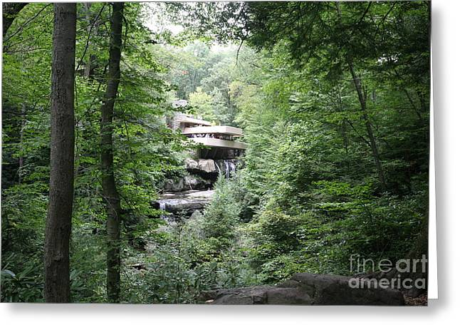 Distant View Fallingwater  Greeting Card by Chuck Kuhn