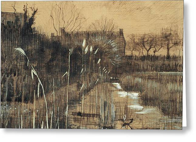 Ditch, 1884 Greeting Card by Vincent Van Gogh