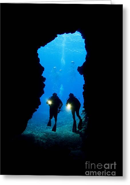 Divers Silhouetted Through Reef Greeting Card by Dave Fleetham - Printscapes
