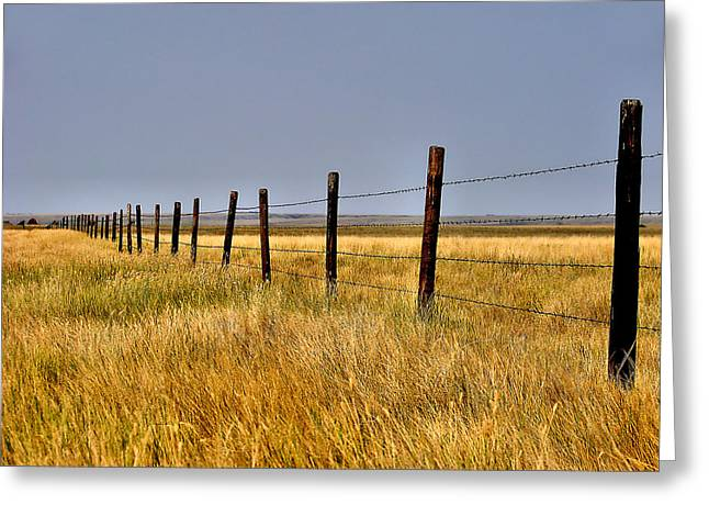 Greeting Card featuring the photograph Dividing Line by Blair Wainman