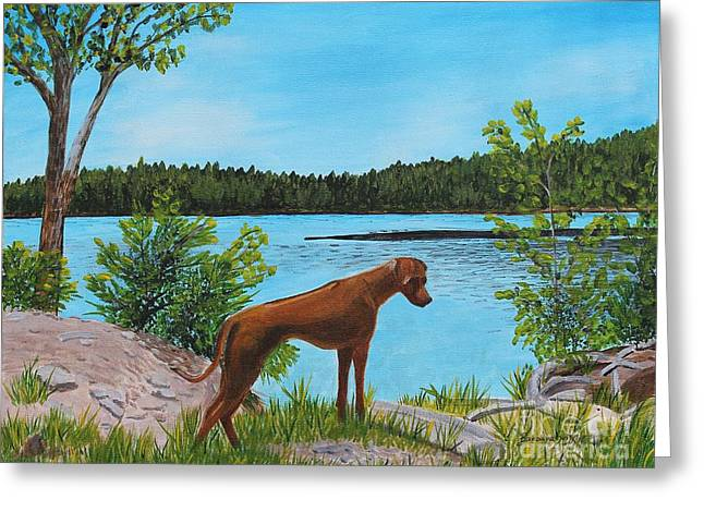 Dixie At The Lake - Rhodesian Ridgeback Greeting Card by Barbara Griffin