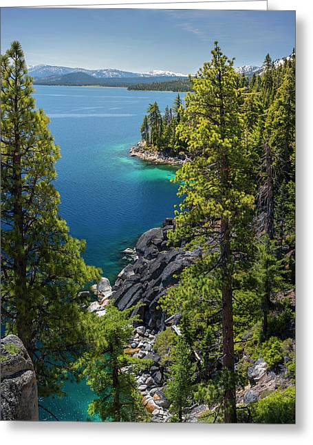 Dl Bliss Lookout By Brad Scott Greeting Card