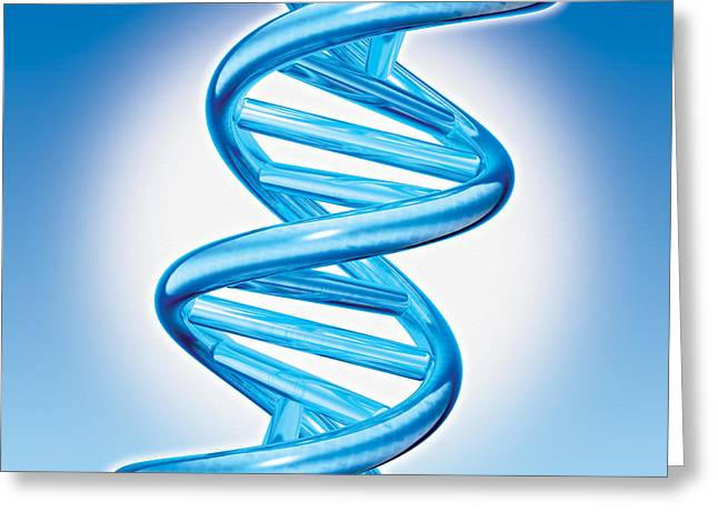 Dna Double Helix Greeting Card by Marc Phares and Photo Researchers