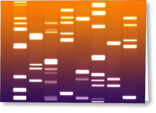 Dna Purple Orange Greeting Card by Michael Tompsett
