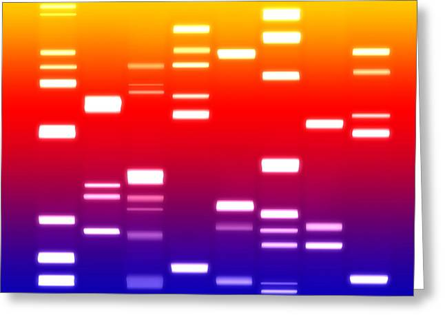 Dna Sunset Greeting Card