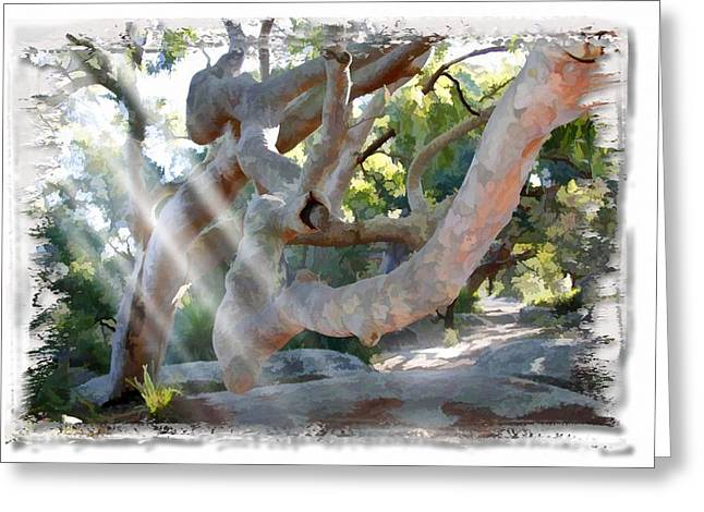 Do-00044 Mount Ettalong Greeting Card
