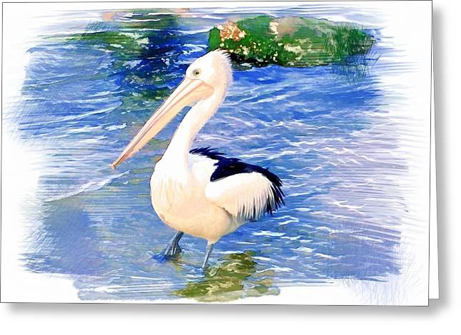 Do-00088 Pelican Greeting Card by Digital Oil
