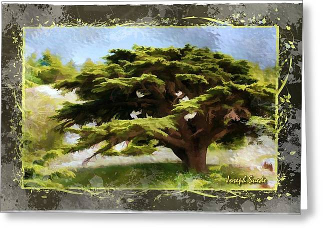 Do-00318 Cedar Barouk - Framed Greeting Card by Digital Oil