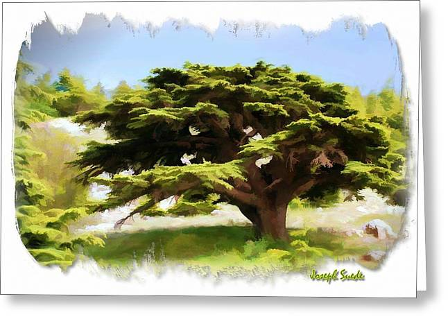 Do-00319 Cedar Tree Greeting Card by Digital Oil
