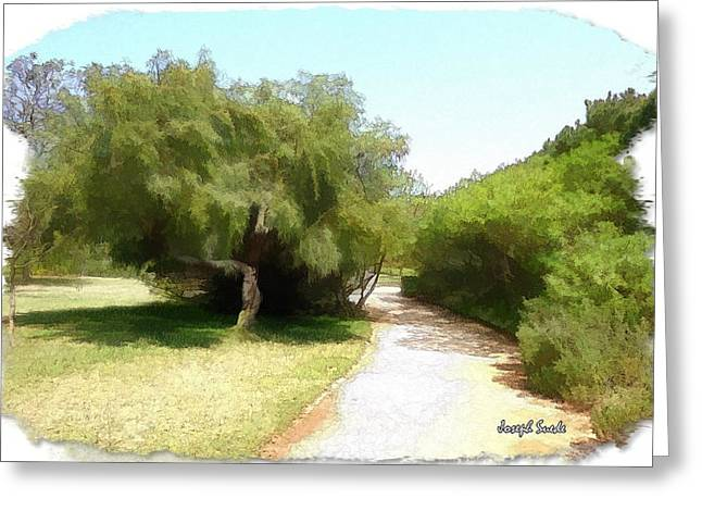 Greeting Card featuring the photograph Do-00336 -pathway Bois Des Pins by Digital Oil
