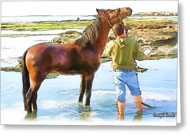 Do-00421 Washing Horse In Mina Greeting Card