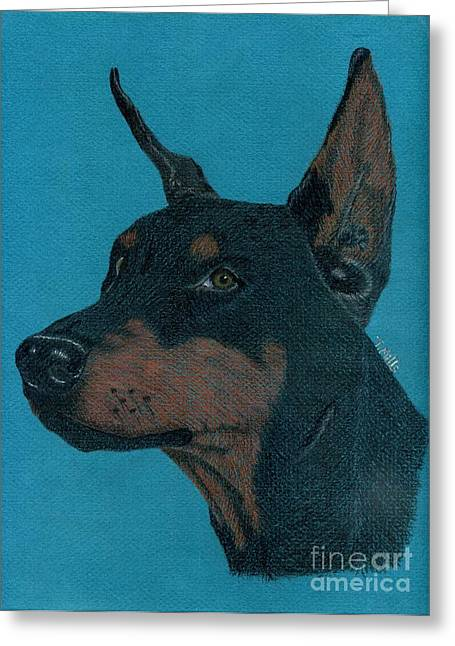 Greeting Card featuring the drawing Doberman Pincher by Terri Mills