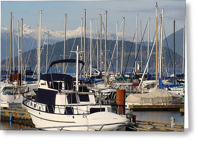 Docked For The Day Greeting Card by Rod Jellison