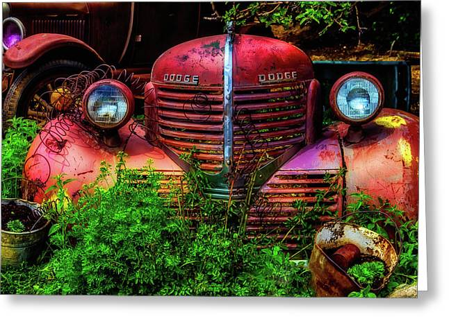 Dodge And Ford Rusting Away Greeting Card