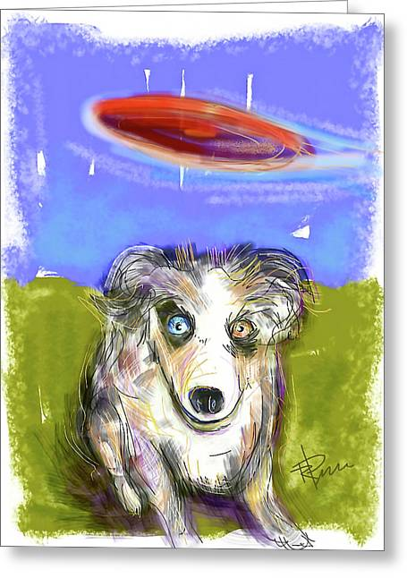Dog And Frisbee Greeting Card