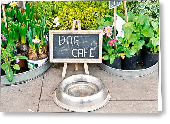 Dog Cafe Greeting Card by Tom Gowanlock