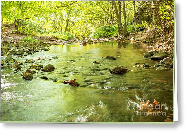 Dog Creek Greeting Card by Linda Steider