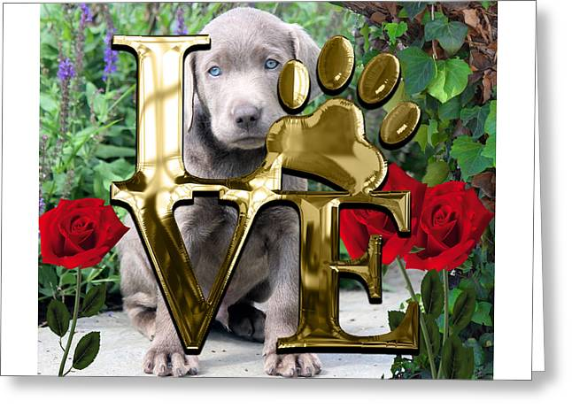 Dog Lover Collection Weimaraner Dog Puppy Greeting Card by Marvin Blaine