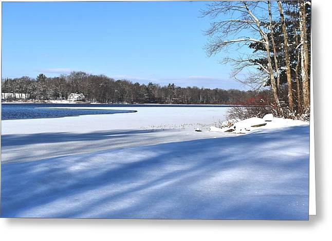 Dog Pond In Winter 1 Greeting Card