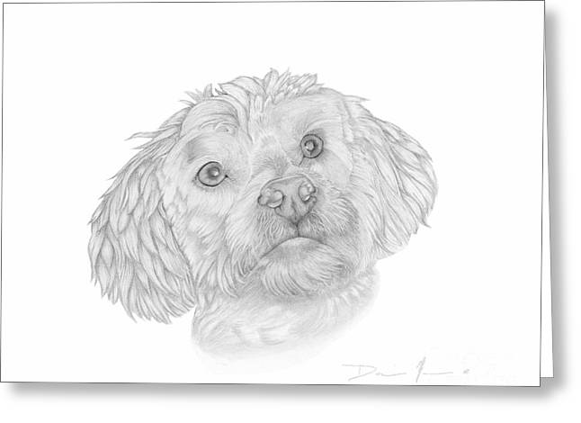 Dog Portrait Marsh Mellow Greeting Card