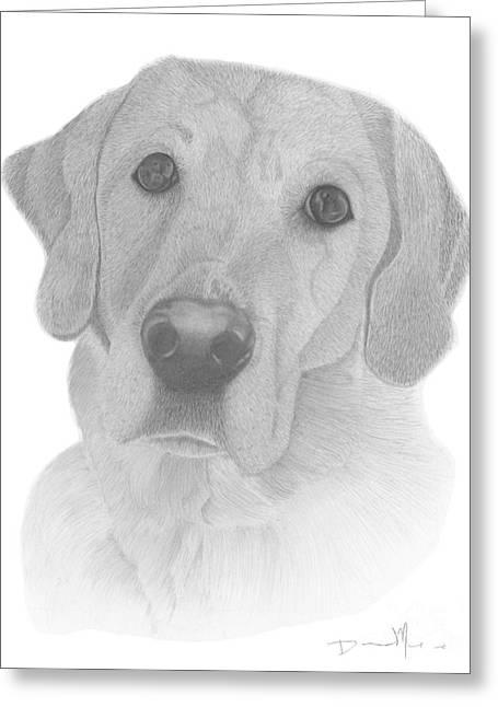 Dog Portrait Webster Greeting Card