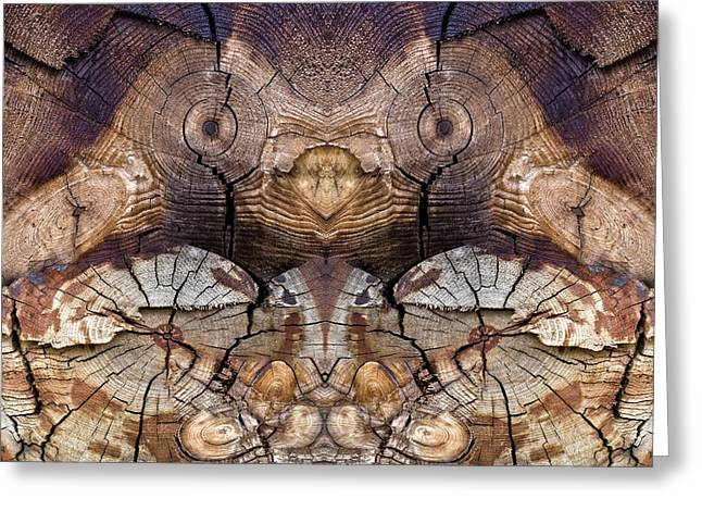 Dog-wood Owl Greeting Card