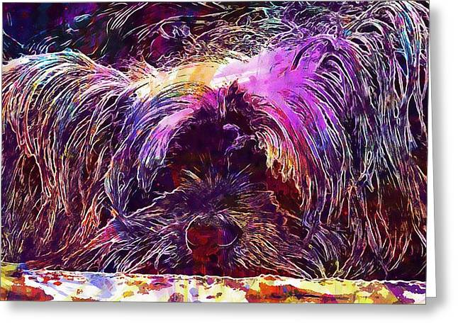 Dog Yorkshire Terrier Lazy Dog  Greeting Card