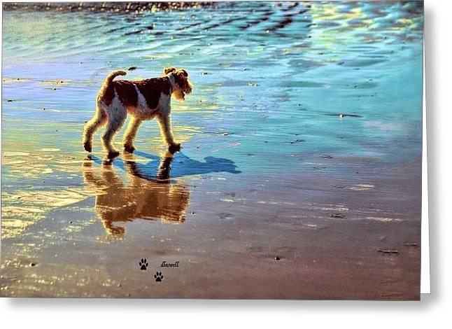 Doggone Beachy Day Greeting Card
