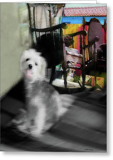 Dogie In The Patio Art  Greeting Card