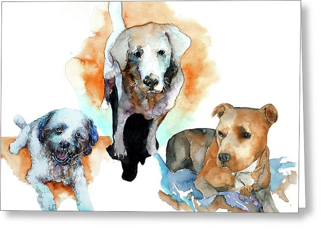Dogs#1 Greeting Card by Rafal Wnek