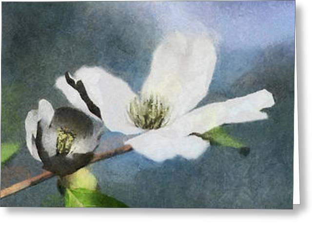 Dogwood Painted Greeting Card