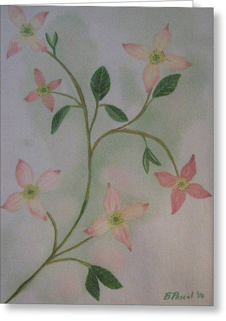 Dogwood Spring Greeting Card by Barbara Pascal