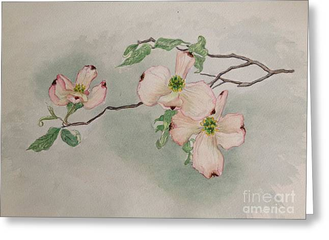Dogwoods Greeting Card by Janet Felts