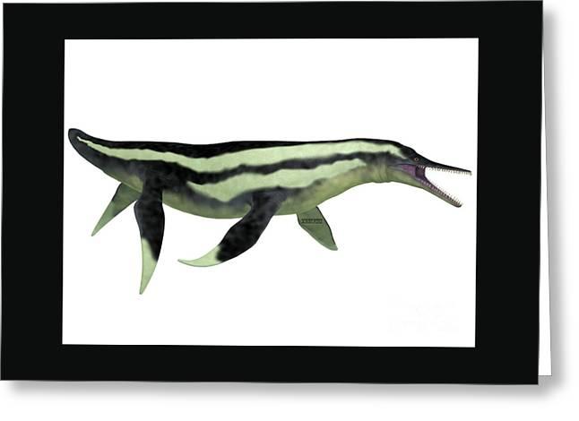 Dolichorhynchops Plesiosaur On White Greeting Card by Corey Ford