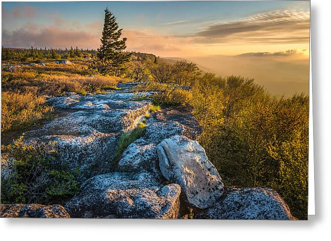 Monongahela National Forset Dolly Sods Wilderness Greeting Card