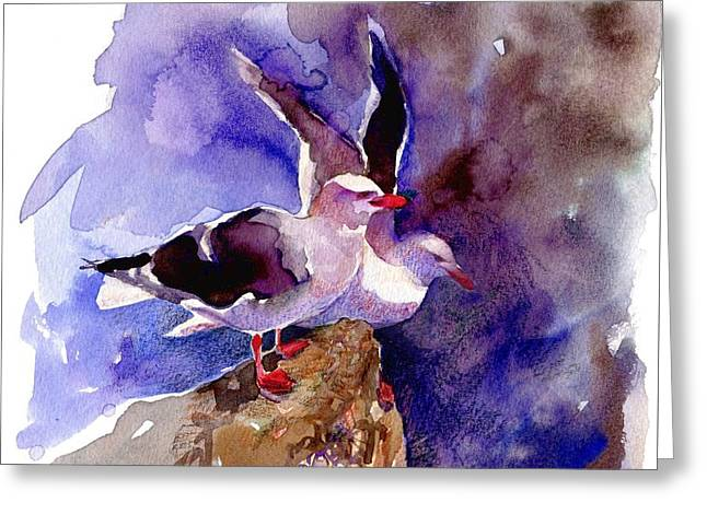 Dolphin Gulls Greeting Card