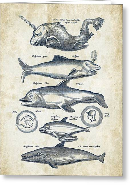 Dolphins Historiae Naturalis 08 - 1657 - 42 Greeting Card by Aged Pixel