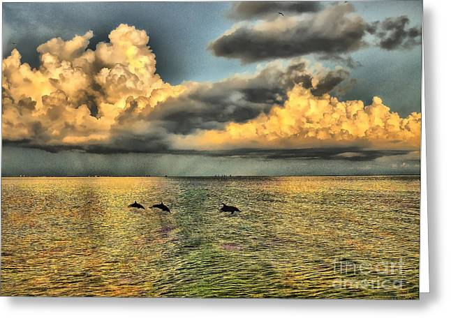Dolphins Play At Sanibel Island Greeting Card by Jeff Breiman