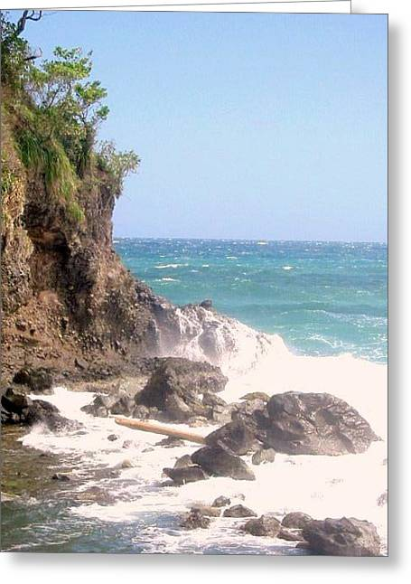Greeting Card featuring the photograph Dominica North Atlantic Coast by Ian  MacDonald