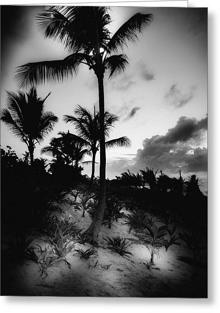 Dominicana Beach Greeting Card