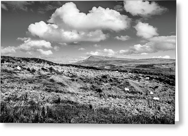 Donegal Scene    Greeting Card by Martina Fagan