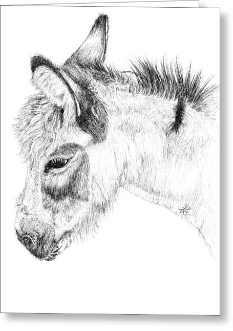Donkey 2 Greeting Card by Keran Sunaski Gilmore