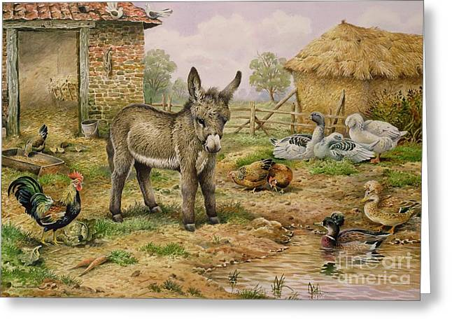 Donkey And Farmyard Fowl  Greeting Card by Carl Donner